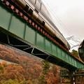 写真: 雨の仙岩峠