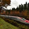 写真: 沿線の紅葉