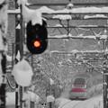 大雪の元日5