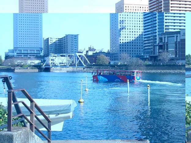水陸両用バス。波間を進んでる。