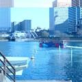 Photos: 水陸両用バス。波間を進んでる。