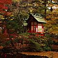 秋の白石神社.3