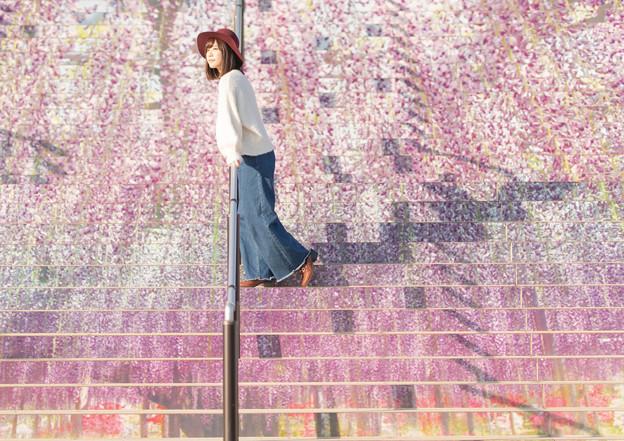 写真: 藤
