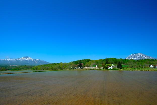 水田に映える山並み