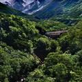 写真: 上ホロカメットク山遠望