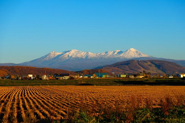 雪化粧する大雪山