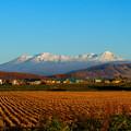 写真: 雪化粧する大雪山