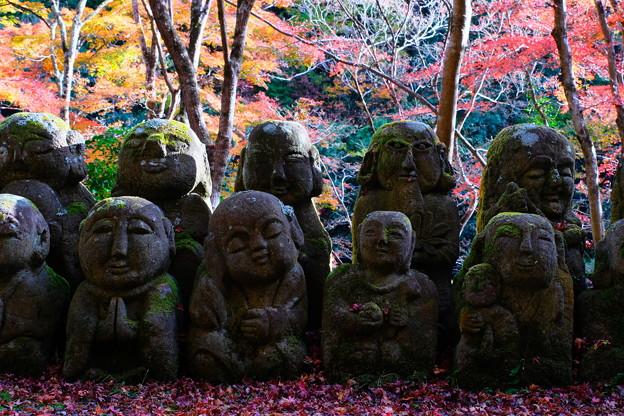 秋の愛宕念仏寺 その1