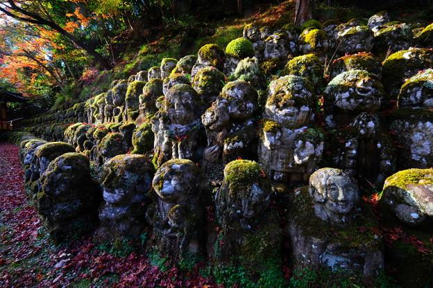 秋の愛宕念仏寺 その2
