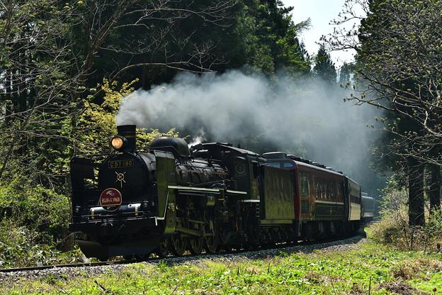 Photos: C57 180SLばんえつ物語新緑のS字カーブ(荻野~山都)