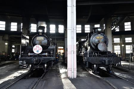 C57 1と8630