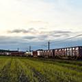 写真: 夕暮れの貨物列車