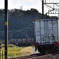 Photos: EF64 1022鹿島貨物1094レ
