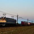 Photos: EF65 2139牽引鹿島貨物1092レ