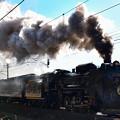 写真: D51 498牽引臨時快速SLぐんまよこかわ号
