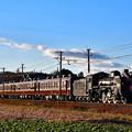 Photos: C58 363牽引秩父鉄道SL初詣号(SL PALEO EXPRESS)