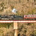 荒川の鉄橋を渡るC58 363