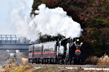 C11 325牽引真岡鐵道SL新年号2019