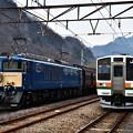 Photos: EF64 1001と211系普通電車