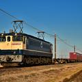 Photos: EF65 2096牽引鹿島貨物1092レ