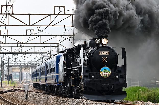 C61 20+12系客車SLぐんまみなかみ号(八木原~渋川)