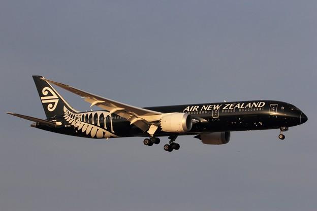 AIR NEW ZEALAND 787-9 Approaching