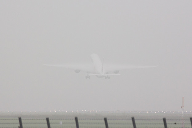 JAL A350 TEST FLIGHT!! その伍