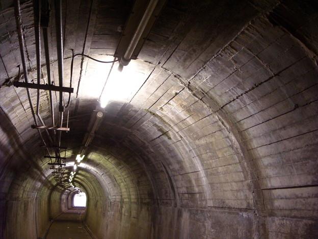 写真: 野山北 公園自転車道 トンネル内