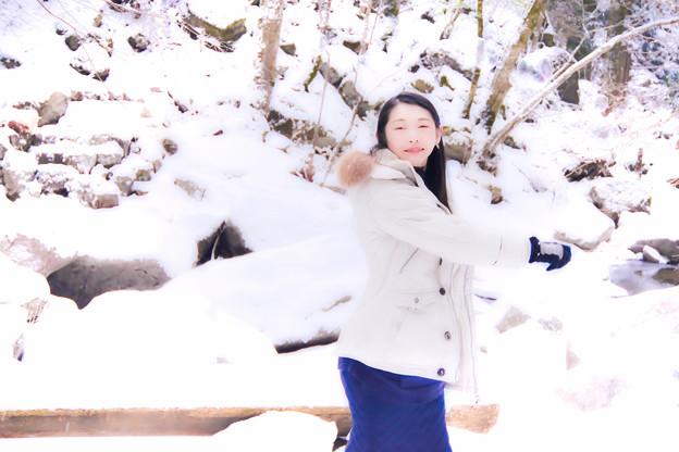 写真: 今ヲ時メク