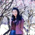 Photos: 梅寒シ