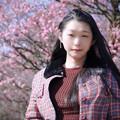 Photos: 蕾固キ梅ノ花