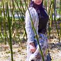 写真: 竹の小径