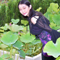 写真: Surrounded by a lotus