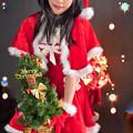 Photos: Christmas tree to you