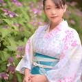Photos: アジサイ通リ