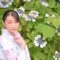 Photos: 紫陽花ノ咲ク庭デ