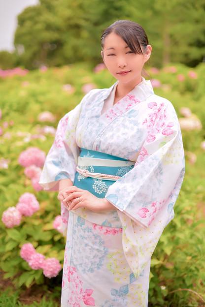 七色紫陽花