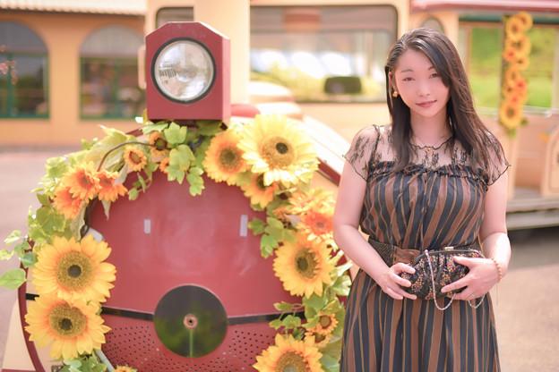 Sunflower train