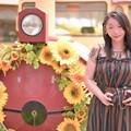 Photos: Sunflower train