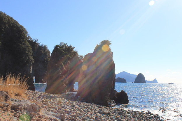 Photos: 陽光をあびて