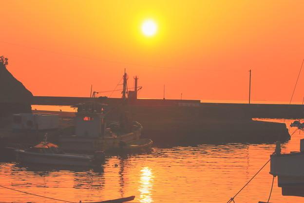 写真: 港の夕景
