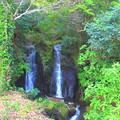 Photos: 山里の滝
