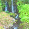 写真: 山里の滝