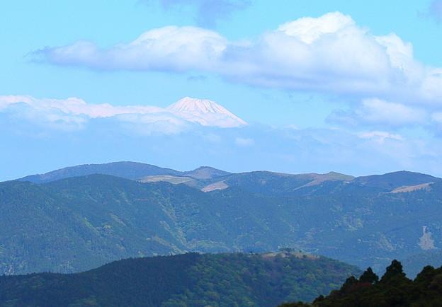 富士山に会えた!