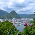 Photos: 下田の町を見下ろして