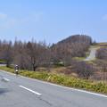 写真: 美ヶ原高原道路