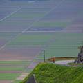 写真: 阿蘇の絶景道