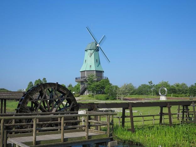写真: 風車&水車!