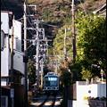冬・江ノ電沿線散歩