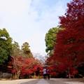 写真: 東漸寺